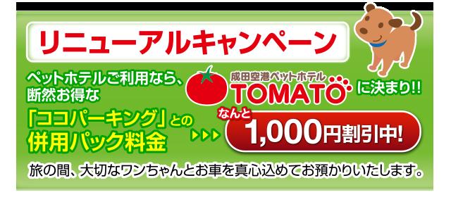リニューアルキャンペーン ペットホテルをご利用なら、断然お得な「ココパーキング」との併用パック料金…なんと1000円割引中!